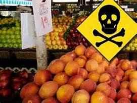 food poisoning food contamination poisoned food